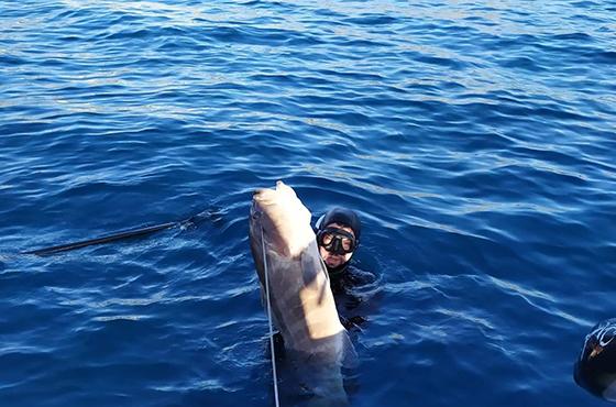 Spearfishing trip Kissamos