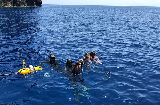 Snorkelling Trip in Crete